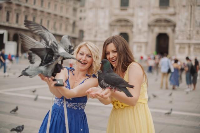 кормление голубей обязательная процедура