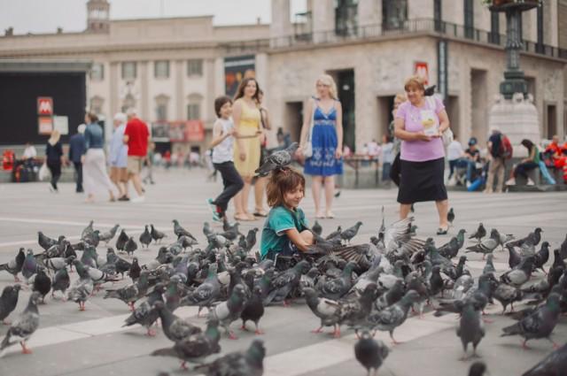 очень много голубей )))