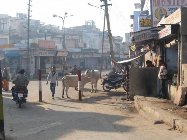 туалет в Бхаратпуре (слева, за перегородочкой)