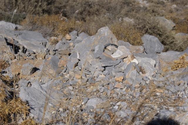 Камни растут