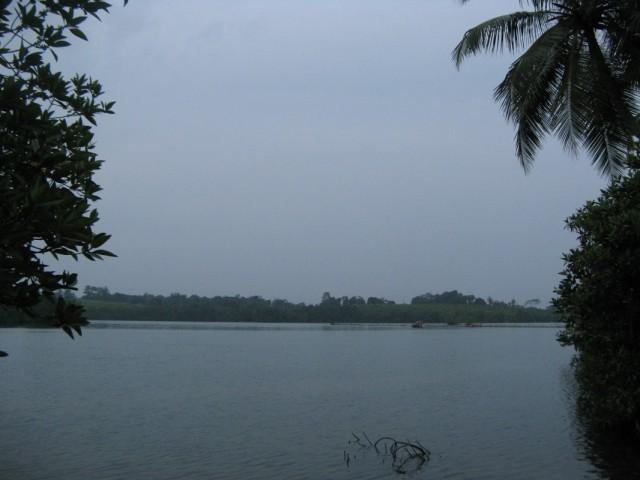 Фото из января 2011. Птичье Озеро, креветочные садки вдалеке
