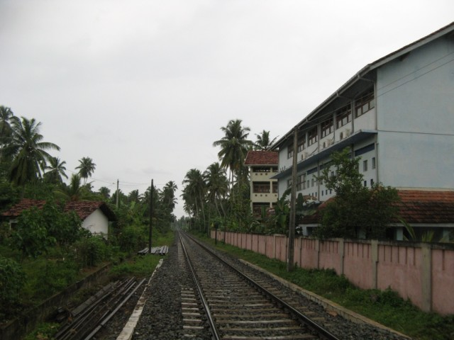 А вот туда, чуть подальше, где кончаются пальмы, успел отъехать поезд