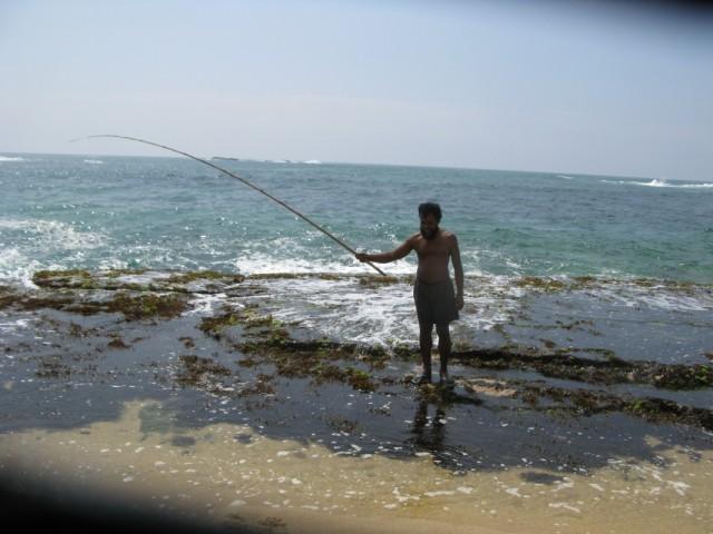 Мачан-С-Бородой на рифе