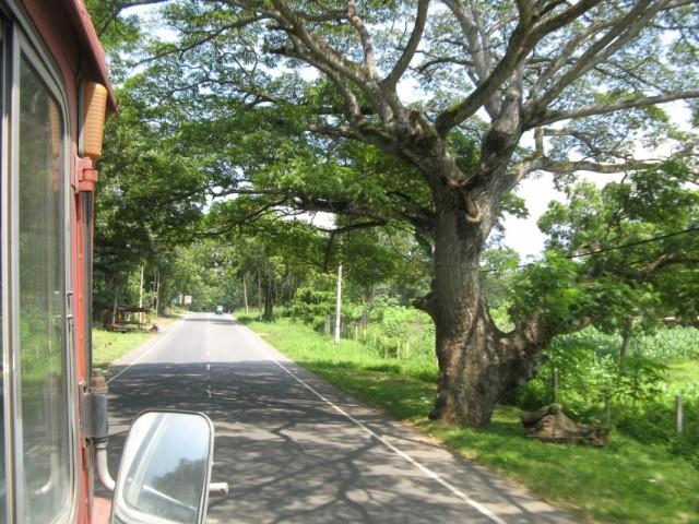 Дорога в сторону Амбалантоты