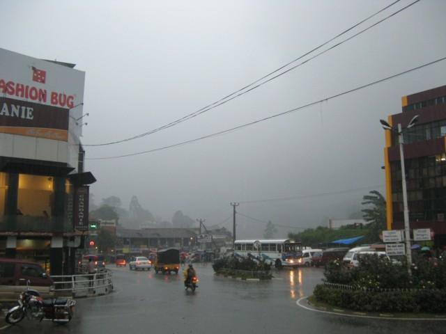 Бандаравела под Дождём