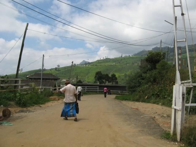 Въезд на станцию Нану Ойя