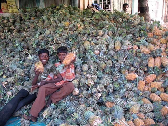 Гора ананасов - прямо как капуста у нас :)
