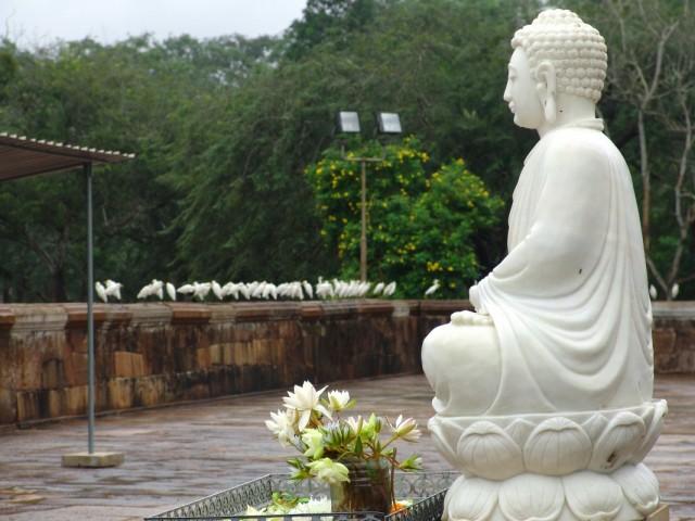 Будда в Anuradhapura