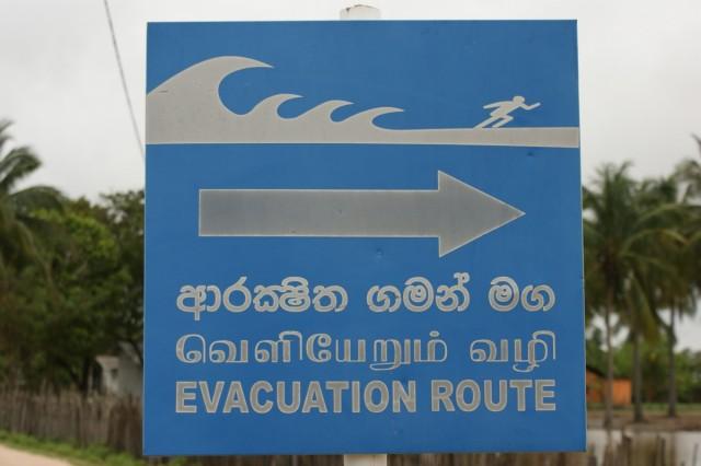 от цунами бежать в глубь острова