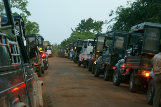 06.00 утра, джипы готовы к Сафари. Яла парк
