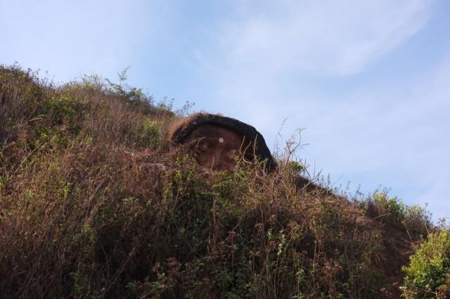 Голова Шивы