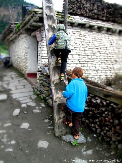 Забавные цельнолитые местные лестницы