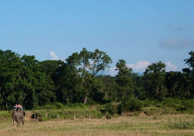 Аннапурна II и Ламджунг со слоником