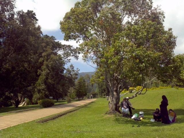 семья тамилов в парке