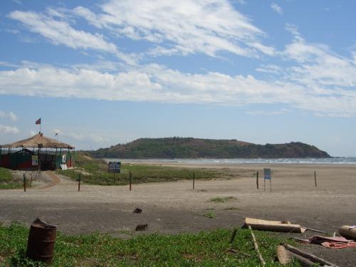 На самом пляже Моржим