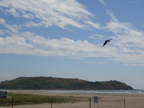 Вид с пляжа моржим на форт Чапора