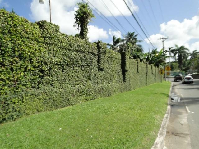 экологический забор