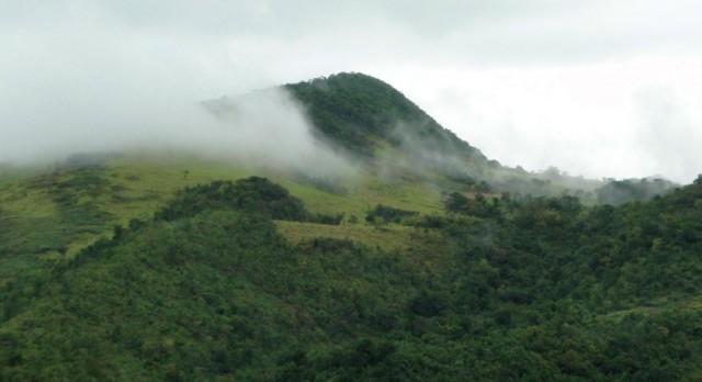 туманная горка в городке Мандевилль