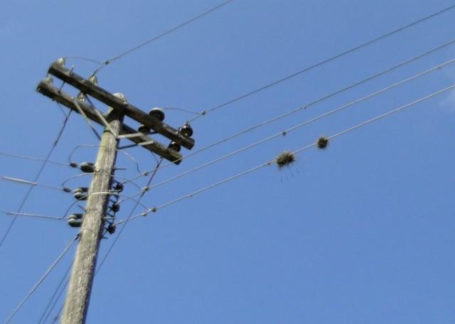 загадочные штучки на проводах