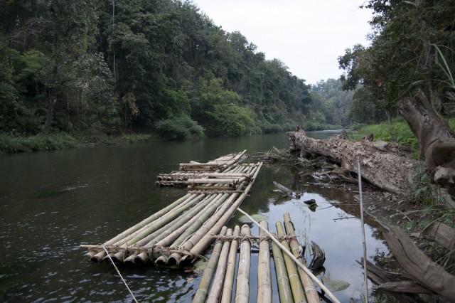 речка в нац парке mae ngao