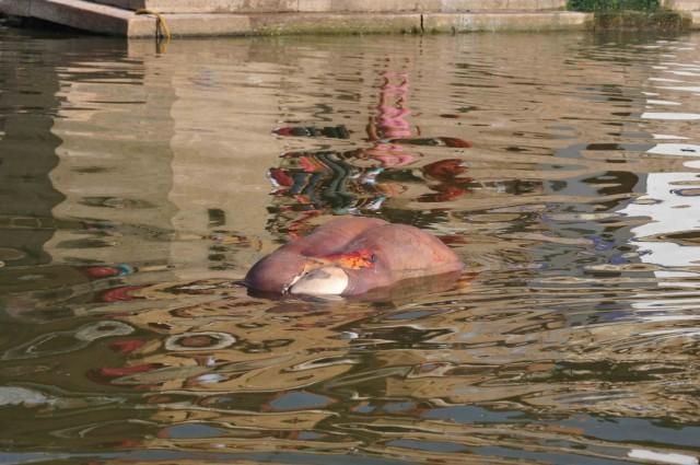 Омытое водами Ганги бренное тело завершает свой земной путь. Душа прерывает круг перерождений.