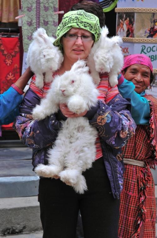 Меховые кролики Васиштха