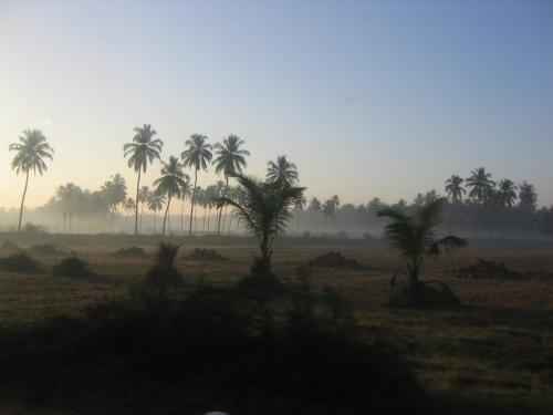 Гоанское утро