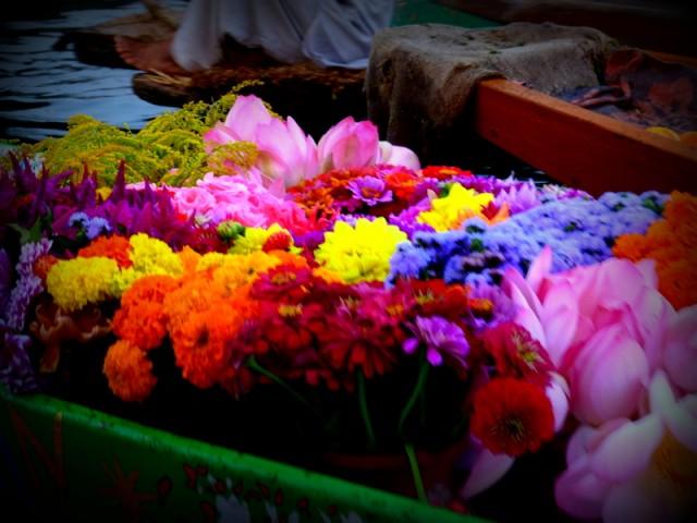 цветы продажные