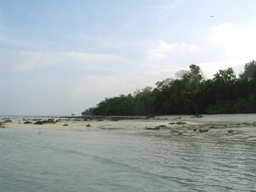 Отлив на пляже №5