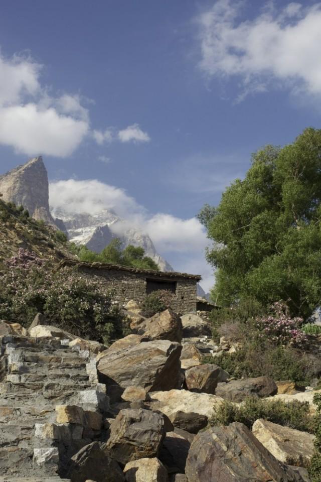 Вид из Ташиганга на Высочайшую вершину Химачал Прадеш Лео Паргьял 6970м