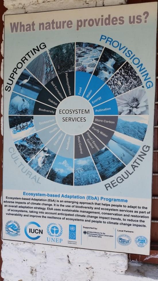Диаграмма экосистемных услуг на стене пункта наблюдений.
