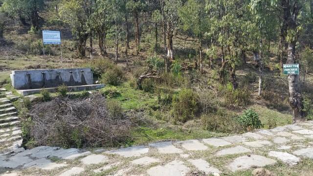 Поляна для палаточного лагеря с водой и дровами между Панчасе-пиком и д. Бхадоре