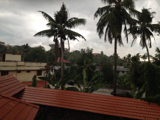 Первый дождь в этом сезоне:)