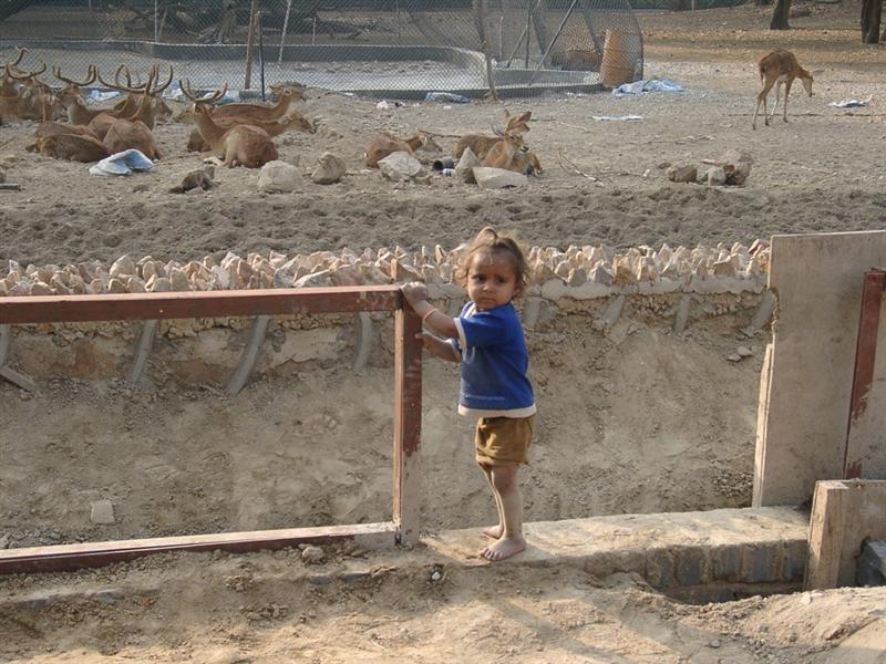 http://www.indostan.guru/forum/foto-video/253/44822_1_o.jpg