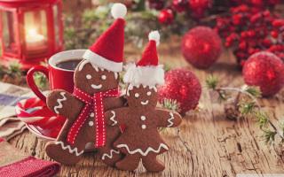 Счастья, здоровья и любви в Новом году всем индостанцам и неиндостанцам!