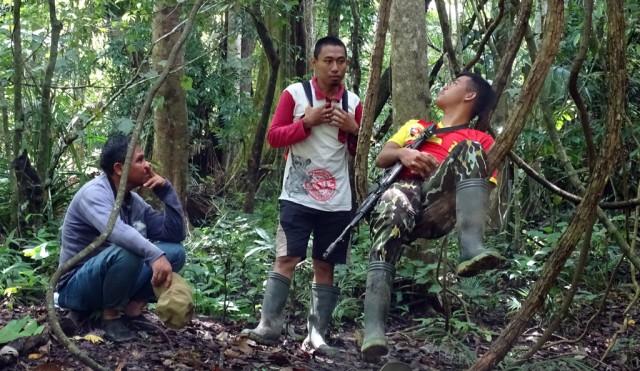 Лесные рейнджеры