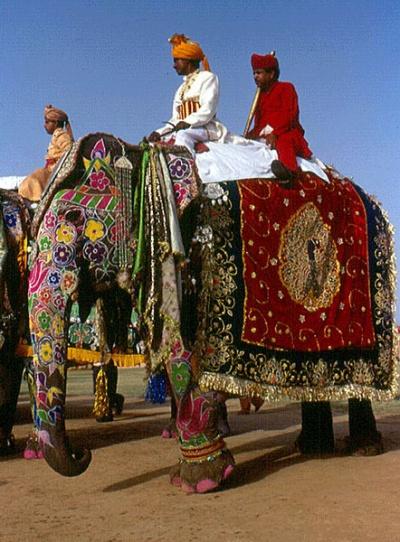 Фестиваль слонов в Джайпуре состоится 3 марта в этом году