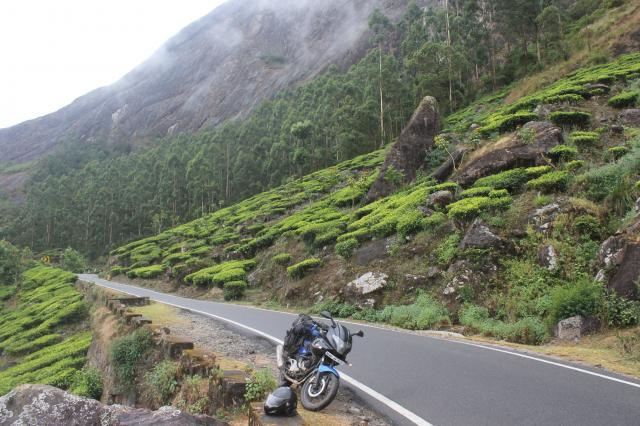 Дорога в Муннар