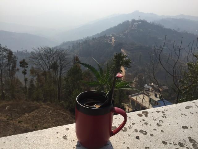 кофе утренний с украшением
