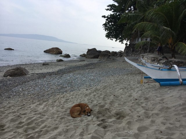 Раннее утро на пляже