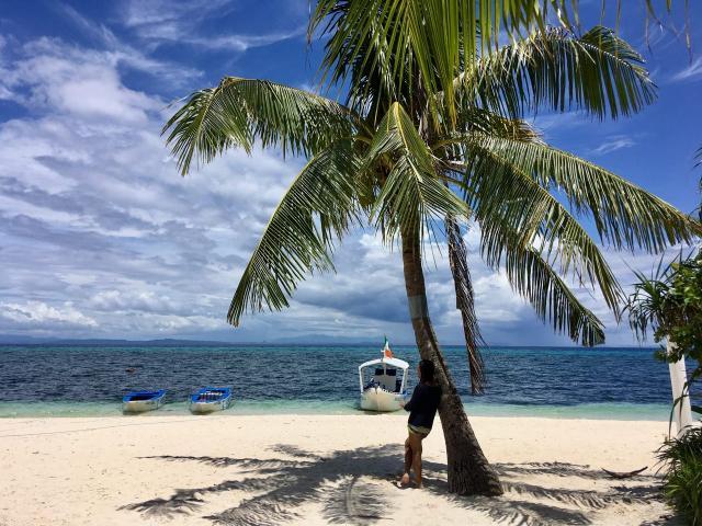 Малапаскуа. Взгляд из-под пальмы
