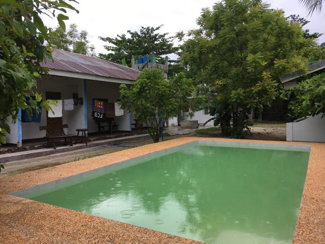 Mr Kwiz зелёный бассейн