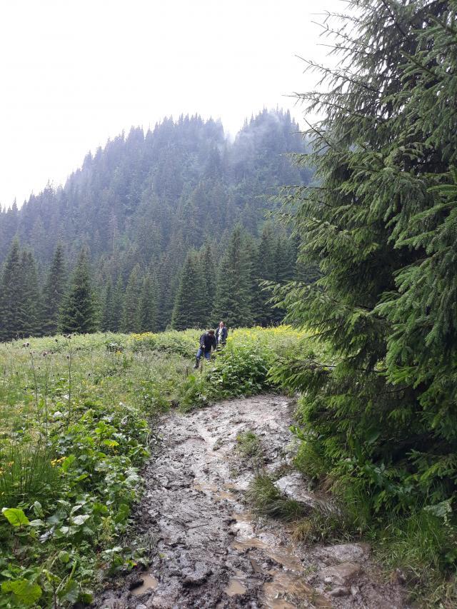ещё немного карпатской грязи по пути)