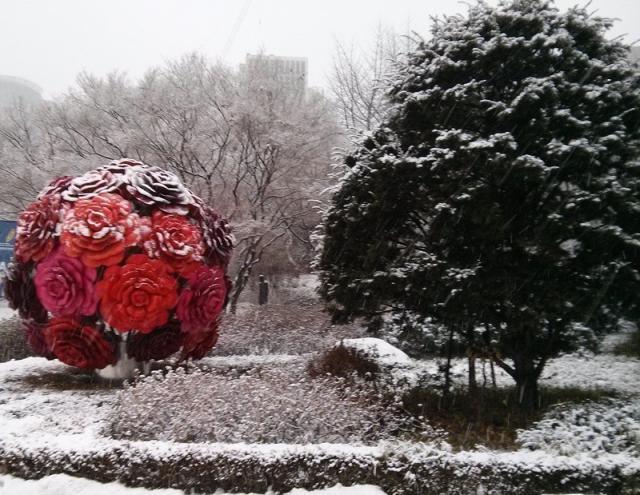 Как-то зимой в парке. Сеул