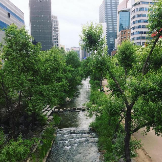 Знаменитый ручей в центре города