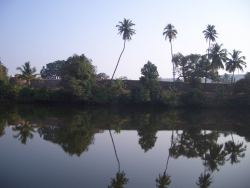 утро, река