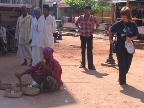 вот и увидела змей в Индии (март 2005г.,Хампи)