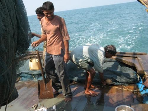 Рыбалка в Чапоре