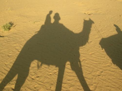 Camel safari/ Rajastan
