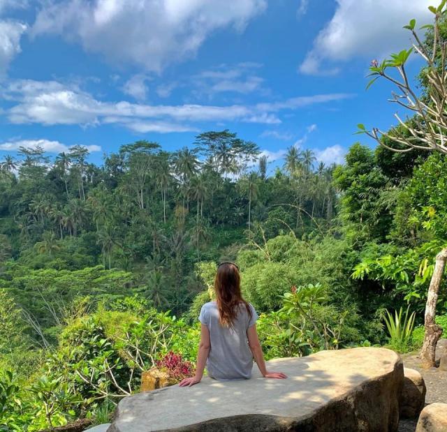 рядом кафе с потрясающим видом на лес